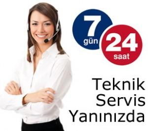 724-300x267